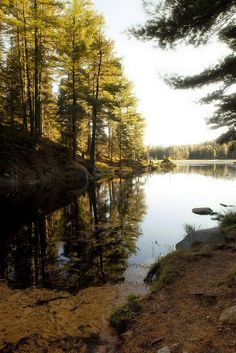 Algonquin Parks's Beaver Pond Trail by William Self, via Flickr