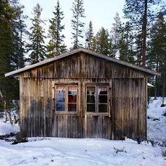Rensjökojan, Orsa Finnmark. SWEDEN.