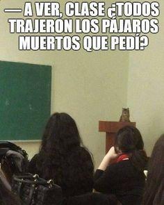 Imagenes de Humor #memes #chistes #chistesmalos #imagenesgraciosas #humor www.megamemeces.c... ➣➢➣ http://www.diverint.com/memes-humor-les-quedan-5-minutos