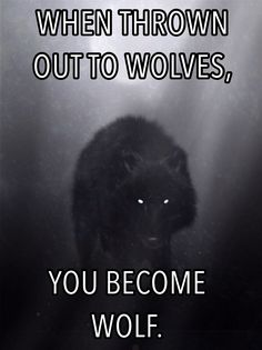 1090 Best wolf sayings and wolf wisdom en wolves quotes