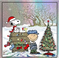'Merry Christmas', rom Charlie Brown, Snoopy, and Woodstock. Merry Christmas Charlie Brown, Charlie Brown Und Snoopy, Peanuts Christmas, Noel Christmas, Winter Christmas, Vintage Christmas, Disney Christmas, Christmas Cartoons, Christmas Greetings