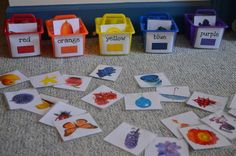 Creative Curriculum Objectives: 28 Have students sort object pictures by color. Discuss the different colors and how many objects of each color were found. Create a collage for each color or have the student think of another object that could be Preschool Colors, Teaching Colors, Preschool Classroom, Preschool Learning, Kids Learning, Creative Curriculum Preschool, Color Activities, Learning Activities, Preschool Activities
