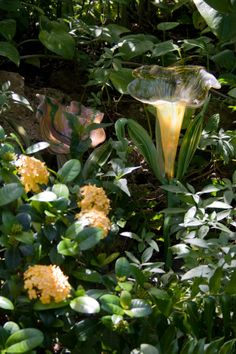 """""""Flower Goblet"""" by Frabel at Phipps Conservatory in Pittsburgh, Pennsylvania, USA"""