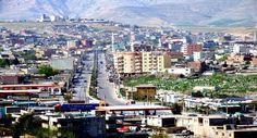 Cizre'de Yasak Kalktı - kureselajans.com-İslami Haber Medyası