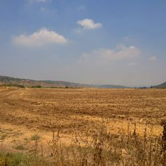 The Ella Valley where David slew Goliath  http://www.pinterest.com/ricetam/history-biblical/