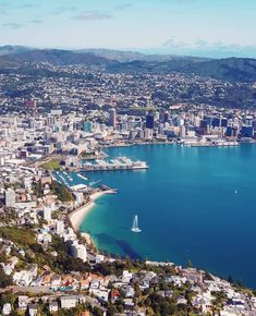 One of the best shots of Wellington, New Zealand we've ever seen 😍♥️ How stunning is our beautiful little capital? New Zealand Cities, Living In New Zealand, Wellington New Zealand, Long White Cloud, Best Cities, British Isles, Cityscapes, Small Towns, Australia