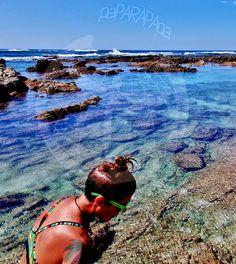 Marieta en piscinas naturales. Playa Garza. Costa RIca.