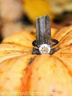 #halloween #pumpkin #wedding #ring #bearer photography - Google Search