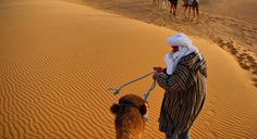 Special family holiday enjoy with you family in the High atlas morocco.