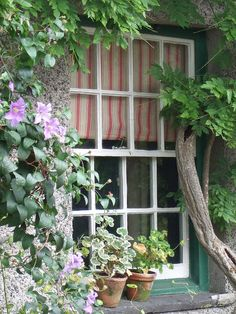 Beatrix Potter's House, The Lakes District, UK