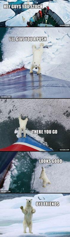Helpful Polar Bear