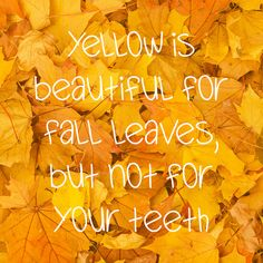 https://flic.kr/p/MEoSDN | whitening-toothpaste-fall-leaves-notube