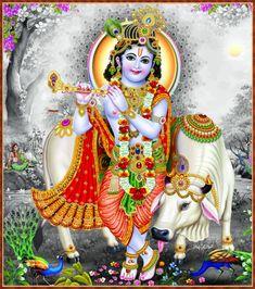 Radha Krishna Quotes, Radha Krishna Images, Lord Krishna Images, Radha Krishna Photo, Krishna Photos, Krishna Art, Yashoda Krishna, Jai Shree Krishna, Radhe Krishna