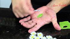 Como Fazer Margaridas, mini folhas e cerejas de Pasta                                                                                                                                                                                 Mais