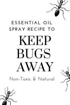 Tap here for an easy, non-toxic spray you can make in minutes to keep bugs away from invading your home and social events. Wellness Tips, Health And Wellness, Keep Bugs Away, Natural Bug Spray, Essential Oil Spray, Essential Oils, What Recipe, Nutritious Snacks, Healthy Environment