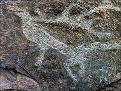 Gallery of prehistoric art found in Altai Mountains.  Archaeologists in Siberia have begun uncovering an extraordinary alfresco gallery  of prehistoric art in the mountains [Credit: Dr.Borodovsky/Siberian Times]
