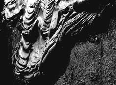 "Saatchi Art Artist: Eman Bose; Black & White 2009 Photography ""Tar"""