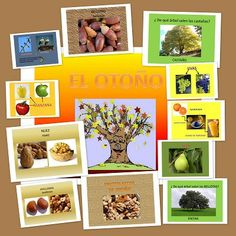 Frutos secos y frutas de Otoño. Bits de inteligencia Teaching Spanish, Teaching English, Ludo, Dora, Class Projects, Fruit, Childcare, Preschool Activities, Ideas Para