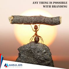 Anything is possible with advertisement when you choose Marlia Ads  #MarliaAds #AdFilms #CorporateFilms #Animation #PhotoShoot