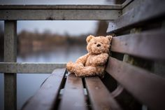 Photo Sitting Ted by Adrian Murray on 500px
