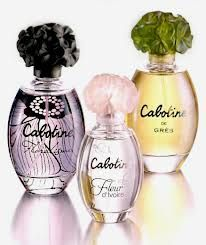 new perfumes 2013 - Google Search