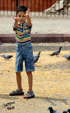 Kabootar kha kha kha :D Such a happy sight to spot a little boy feeding the pigeons in the morning ! #Jaipur #JaipurBeat
