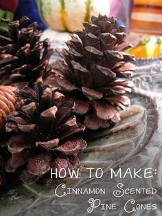 How to make all-natural cinnamon scented pine cones. Tutorial from To Make Christmas Cones) Pine Cone Crafts, Christmas Projects, Fall Crafts, Holiday Crafts, Holiday Fun, Christmas Ideas, Holiday Ideas, All Things Christmas, Christmas Holidays
