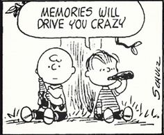 this isn't happiness™ - photo caption contains external link Peanuts Cartoon, Peanuts Gang, Peanuts Comics, Character Quotes, Comic Panels, Calvin And Hobbes, Vintage Comics, Thought Provoking, Comic Strips