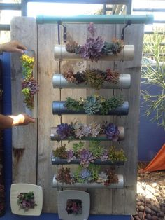 We will have a similar concept to this one two of the tables with pvc pipe spray painted in metallics on the tables, the other tables will be different sized pvc placed vertically on the tables and varying heights. Drain Cover, Pvc Pipe, Wine Rack, Ladder Decor, Planters, Tables, Backyard, Diy Crafts, Concept
