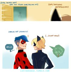 Marin (who is Marinette, who is actually a girl but was turned to the opposite gender by a villain) was just chilling in his room when he saw Chat Noir outside his window, he panicked and ran to his...