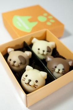 Even cuter: Chocolate Cat Bon Bons. Japanese Sweets, Japanese Candy, Japanese Snacks, Desserts Japonais, Chocolate Cat, Japanese Chocolate, Chocolate Candies, Chocolate Truffles, Food Packaging
