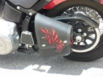 "'Photos of the beautiful ""Fire Hummingbird"" set from our dear Texas customer. Swing-arm bag.'"