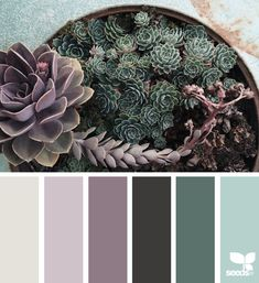 18 Ideas For Bedroom Colors Paint Warm Design Seeds Bedroom Colour Palette, Bedroom Paint Colors, Interior Paint Colors, Interior Design, Young House Love, Kitchen Paint Colors, Bathroom Colors, Design Seeds, Sweet Home