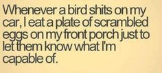 Whenever a bird shits on my car, I eat a plate of scrambled eggs on my front porch just to let them know what I'm capable of.