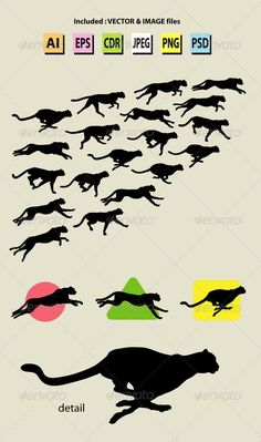 Running Cheetah Symbol and Silhouettes  #GraphicRiver Nice and detail cheetah action symbol & silhouettes vector. Good use for your symbol, logo, sticker design, wallpaper, or any design you want. Easy to use, edit, or change color.   ZIP included : AI CS cmyk, EPS8, CDR coreldraw (vector files = can use any size you want without loss resolution. Use Adobe Illustrator or any support vector program to edit), JPEG rgb high resolution, PNG transparent, and PSD photoshop file.