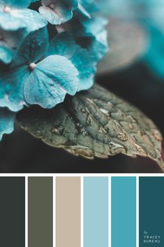 by Tracey Bureau - Color Palettes, Patterns Designs, Yoga Apparel & Accessories Welcome to Authentic Days & Beach Causeways - where color and pattern designs become yoga leggings Palettes Color, Colour Schemes, Color Combos, Modern Colors, Teal Colors, Paint Colors, Teal Flowers, Colorful Flowers, Surface Pattern Design