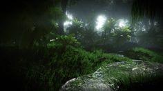 dark jungle - Google Search