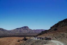 Hiking in Tenerife – 5 years Tenerife Walking Festival Tenerife, 5 Years, All Over The World, Wander, Hiking, Mountains, Nature, Travel, World