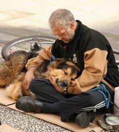 """""""Wenn ein Hund eine enge Beziehung mit einer fürsorglichen Besitzer bildet, kann ihre Loyalität unzerbrechlich sein, und sie werden mit ihrem Besitzer durch dick und dünn. Und im Gegensatz zu uns, Hunde nicht Urteil über Menschen, die auf ihr Glück oder Obdachlose nach unten sind. Dieser Beitrag ist ein Tribut an heimatlose Hunde, die lieben und halten mit ihren Obdachlosen Eigentümer, egal was."""