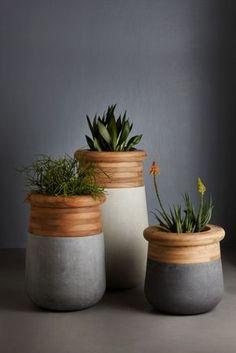 Indigenus   Soma planters by Laurie Wiid van Heerden