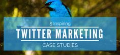 Twitter Marketing Case Studies
