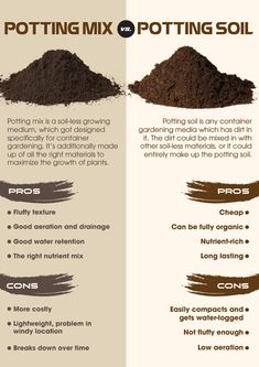 Potting Mix: What's the Difference? Potting mix and potting soil are 2 phrases that are generally used interchangeably to refer to any medium through which a plant can grow inside a container. Garden Plants, Indoor Plants, House Plants, Potted Plants, Growing Vegetables, Growing Plants, Growing Flowers, Organic Gardening, Gardening Tips