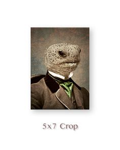 Anthropomorphic Animal Art, Turtle Tortoise, Mixed Media Collage, Reptile Decor…