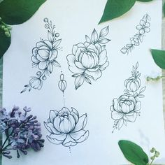#peonies#tattoo#sketch#draw