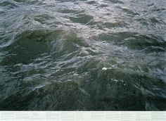 Black water is alluring because it is disturbing and irreconcilable. Black water is violent because it is alluring and because it is water.