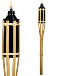Google Image Result for http://www.great-birthday-party-ideas.com/image-files/luau-tiki-torch.jpg