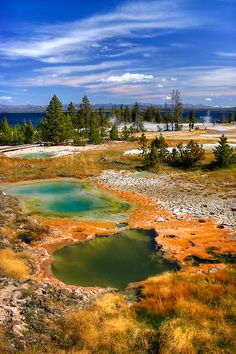 Yellowstone trip: West Thumb Geyser Basin. I like this one because it's right onYellowstone lake. Located on the junction of the road that goes down to Teton NP and the main loop.