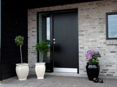 Outdoor Areas, House Front, Dom, Exterior Design, Future House, Tall Cabinet Storage, Facade, Entrance, Living Spaces
