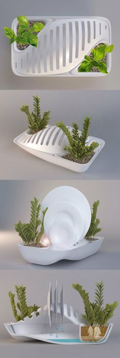 Green Dish Rack save water grow plant. I want this product NOW, and with  weddings coming up an amazingly cool gift!