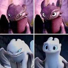 Proves that they were made for each other - candy Cute Toothless, Toothless And Stitch, Toothless Dragon, Hiccup And Toothless, Toothless Night Fury, Httyd Dragons, Cute Dragons, Images Disney, Disney Art
